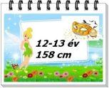 12-13 év, 158 cm/ lány jelmez